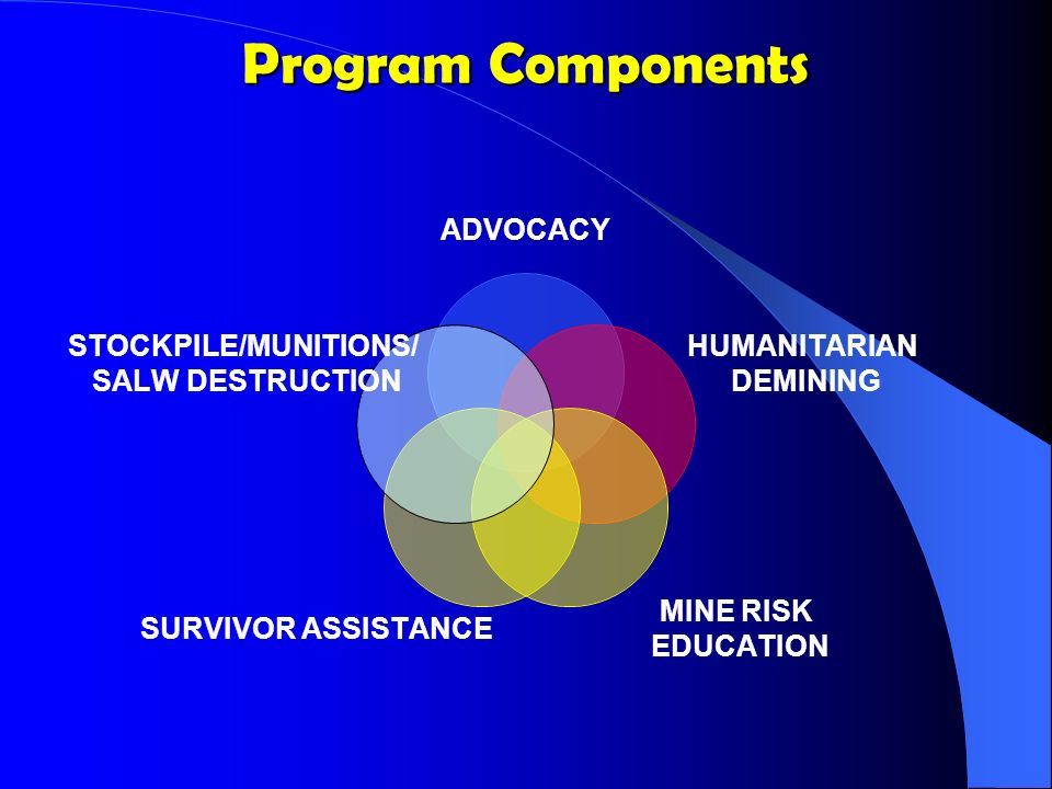 OAS SURVIVOR ASSISTANCE Phase I Emergency Treatment Phase II Physical Rehabilitation Phase III Vocational Training Phase IV Social reintegration & job placement Psychological Rehabilitation