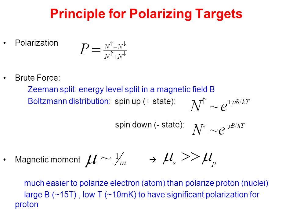 Dynamic Nuclear Polarization (proton)