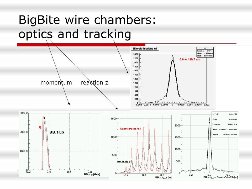 BigBite wire chambers: optics and tracking momentum reaction z