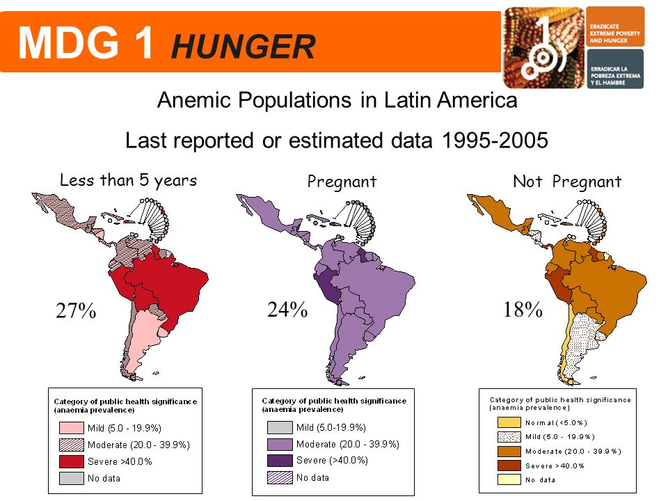 Pregnant Not Pregnant Less than 5 years Anemic Populations in Latin America Last reported or estimated data 1995-2005 27% 24%18% MDG 1 HUNGER