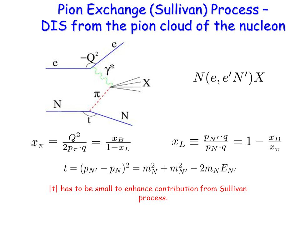 Pion Exchange (Sullivan) Process – DIS from the pion cloud of the nucleon |t| has to be small to enhance contribution from Sullivan process.