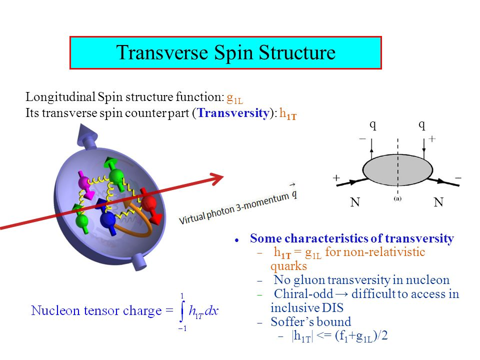 Transverse Spin Structure Some characteristics of transversity h 1T = g 1L for non-relativistic quarks No gluon transversity in nucleon Chiral-odd difficult to access in inclusive DIS Soffers bound |h 1T | <= (f 1 +g 1L )/2 Longitudinal Spin structure function: g 1L Its transverse spin counter part (Transversity): h 1T NN qq