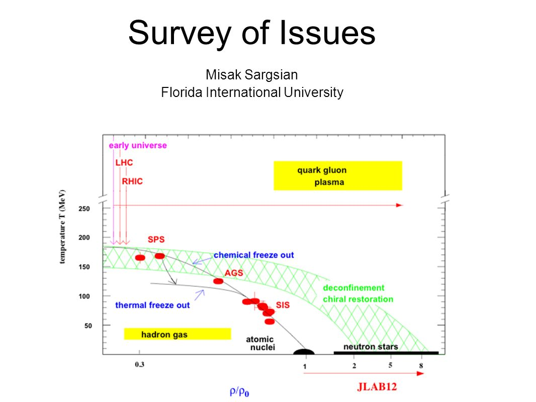 Survey of Issues Misak Sargsian Florida International University