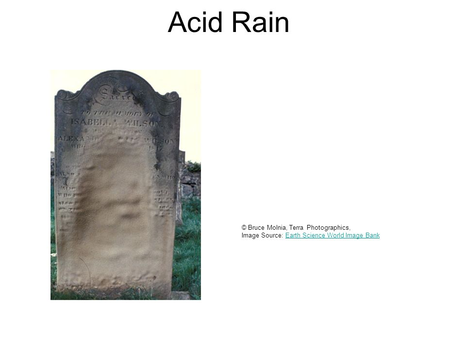 Acid Rain © Bruce Molnia, Terra Photographics, Image Source: Earth Science World Image BankEarth Science World Image Bank