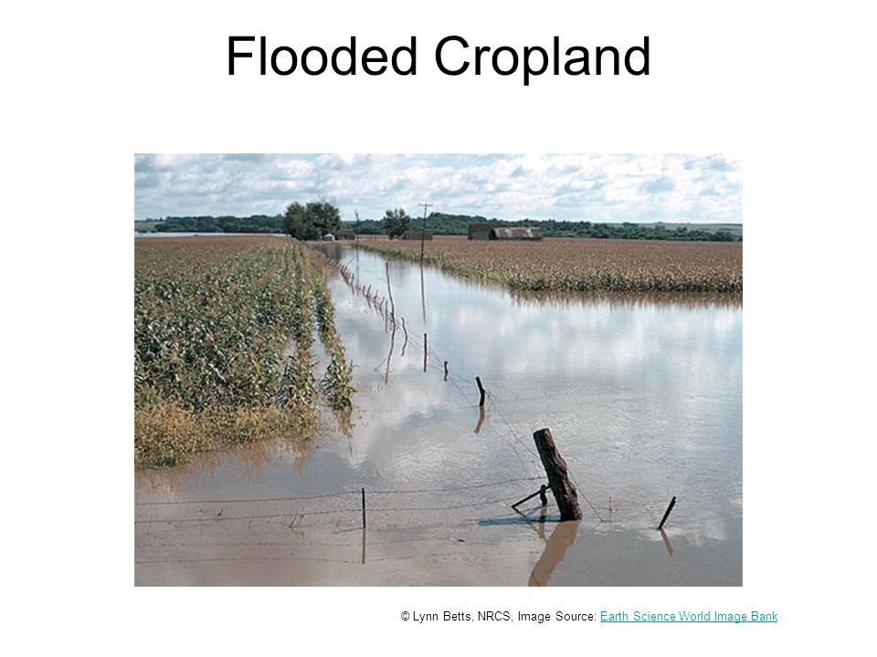 Flooded Cropland © Lynn Betts, NRCS, Image Source: Earth Science World Image BankEarth Science World Image Bank