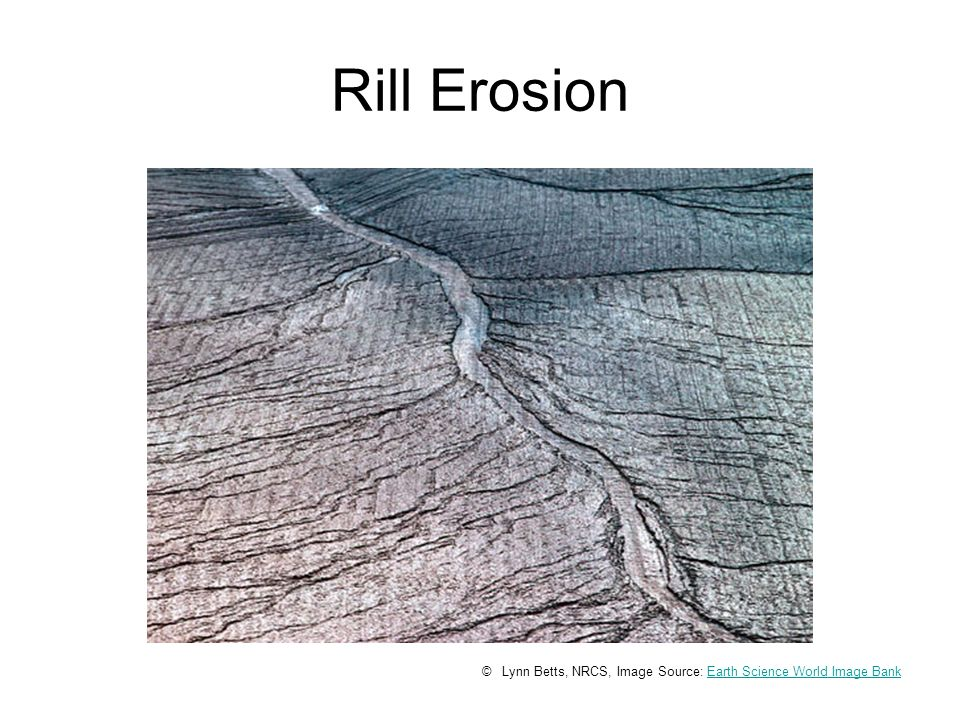 Rill Erosion © Lynn Betts, NRCS, Image Source: Earth Science World Image BankEarth Science World Image Bank