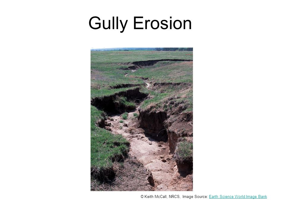 Gully Erosion © Keith McCall, NRCS, Image Source: Earth Science World Image BankEarth Science World Image Bank