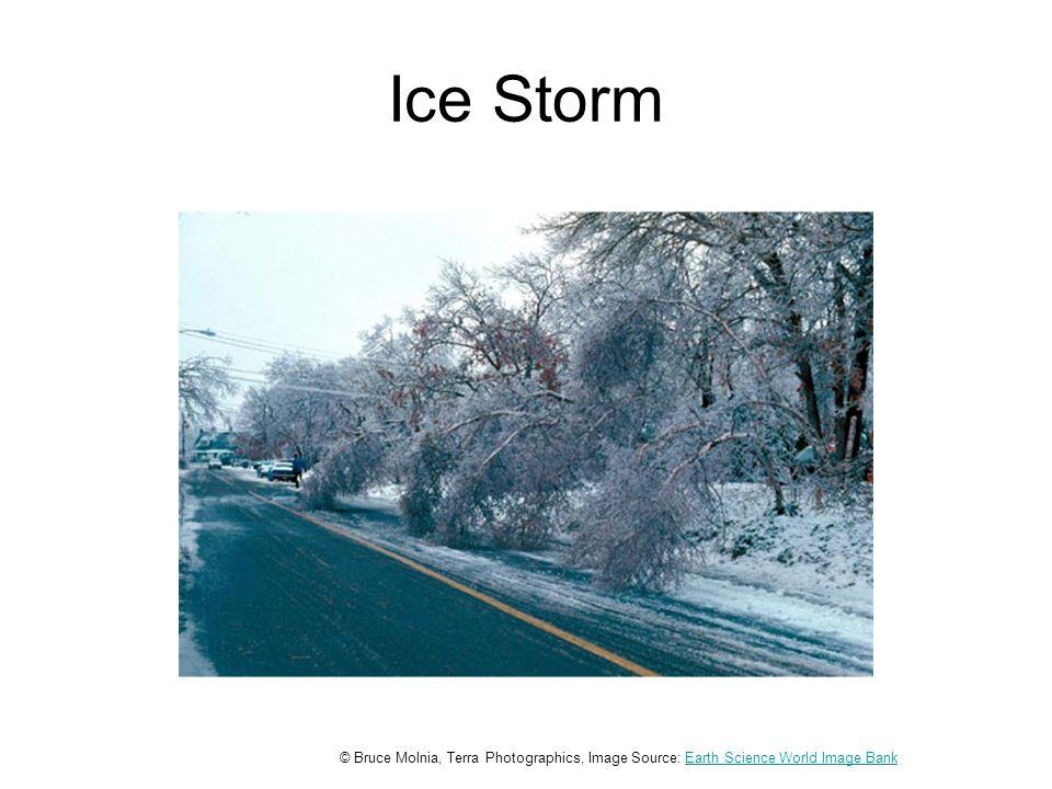 Ice Storm © Bruce Molnia, Terra Photographics, Image Source: Earth Science World Image BankEarth Science World Image Bank