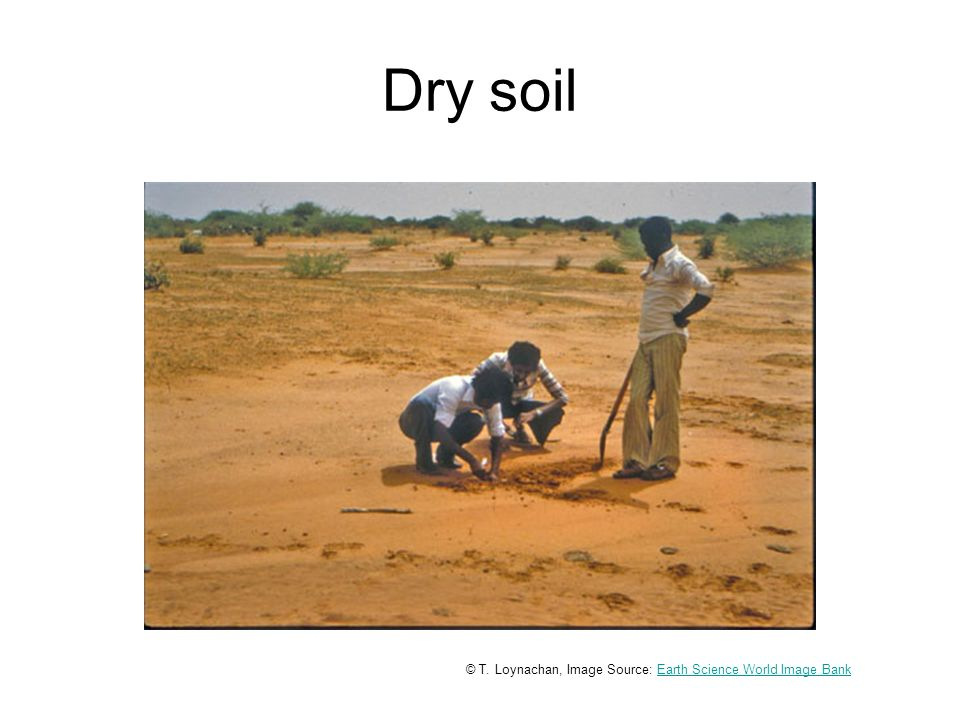 Dry soil © T. Loynachan, Image Source: Earth Science World Image BankEarth Science World Image Bank