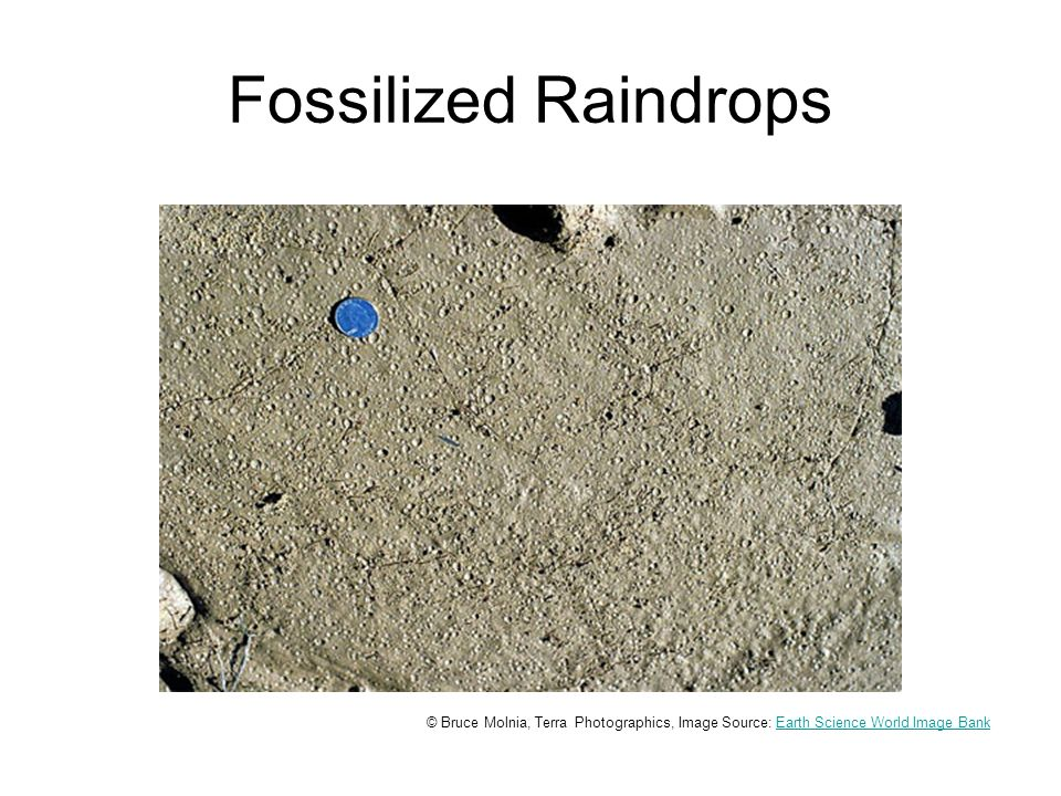 Fossilized Raindrops © Bruce Molnia, Terra Photographics, Image Source: Earth Science World Image BankEarth Science World Image Bank