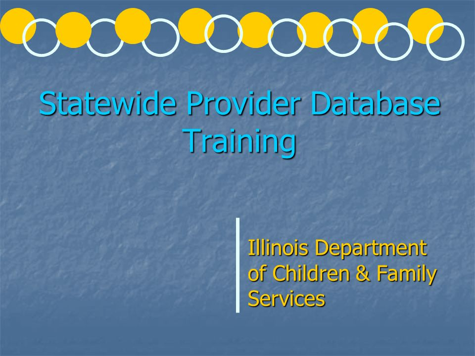 Statewide Provider Database Training Illinois Department of Children & Family Services