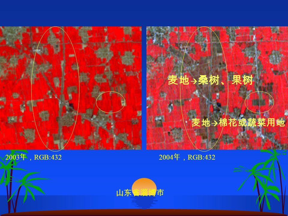 2003 RGB:4322004 RGB:432