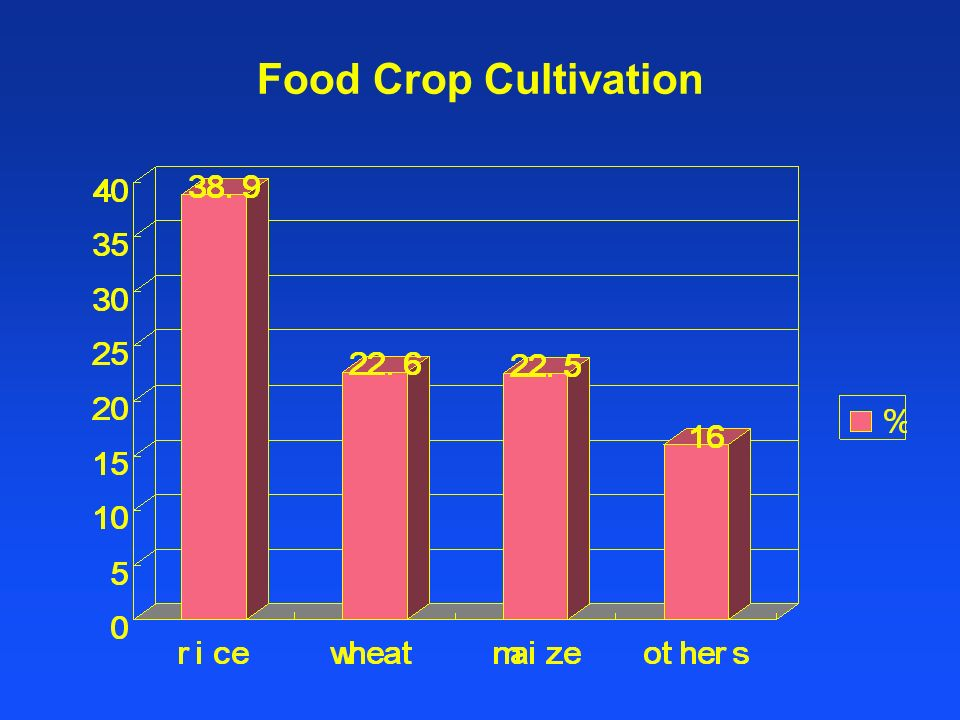 Food Crop Cultivation