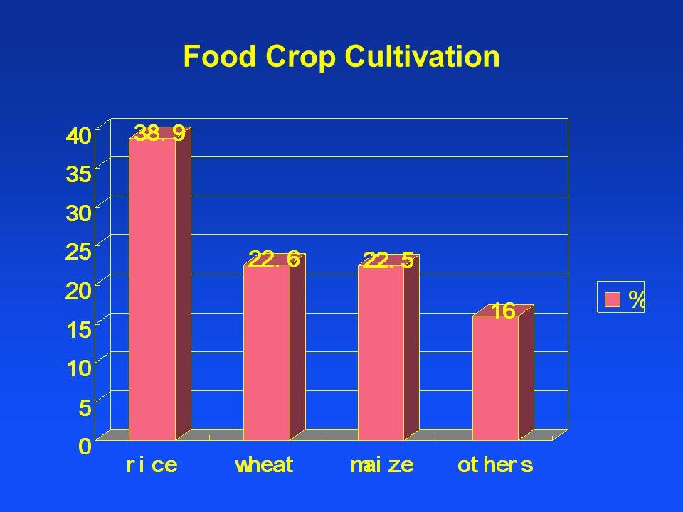 Distribution of main crops Winter Wheat Maize