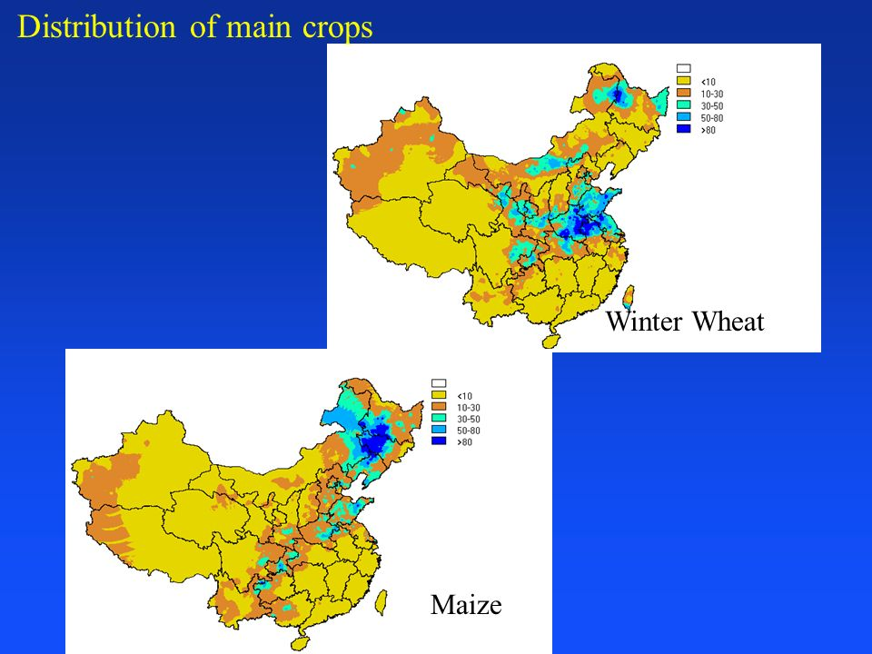 Distribution of main crops Winter Wheat Maize