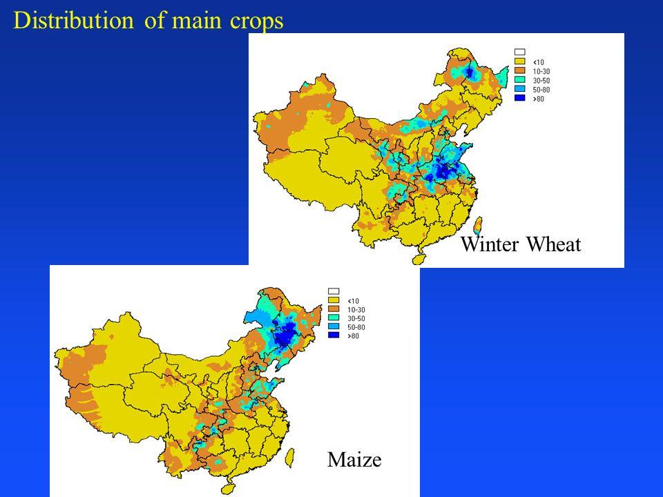 Impact on Grain Production net decraes 180.47 M mu (15 mu = 1 ha) average 9.02 M mu / year total decrease production 439.83 MT