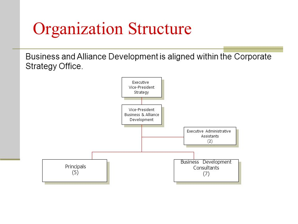 Organization Structure Business and Alliance Development is aligned within the Corporate Strategy Office.