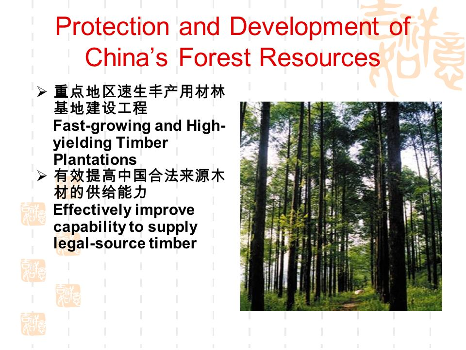 Fast-growing and High- yielding Timber Plantations Effectively improve capability to supply legal-source timber Protection and Development of Chinas Forest Resources