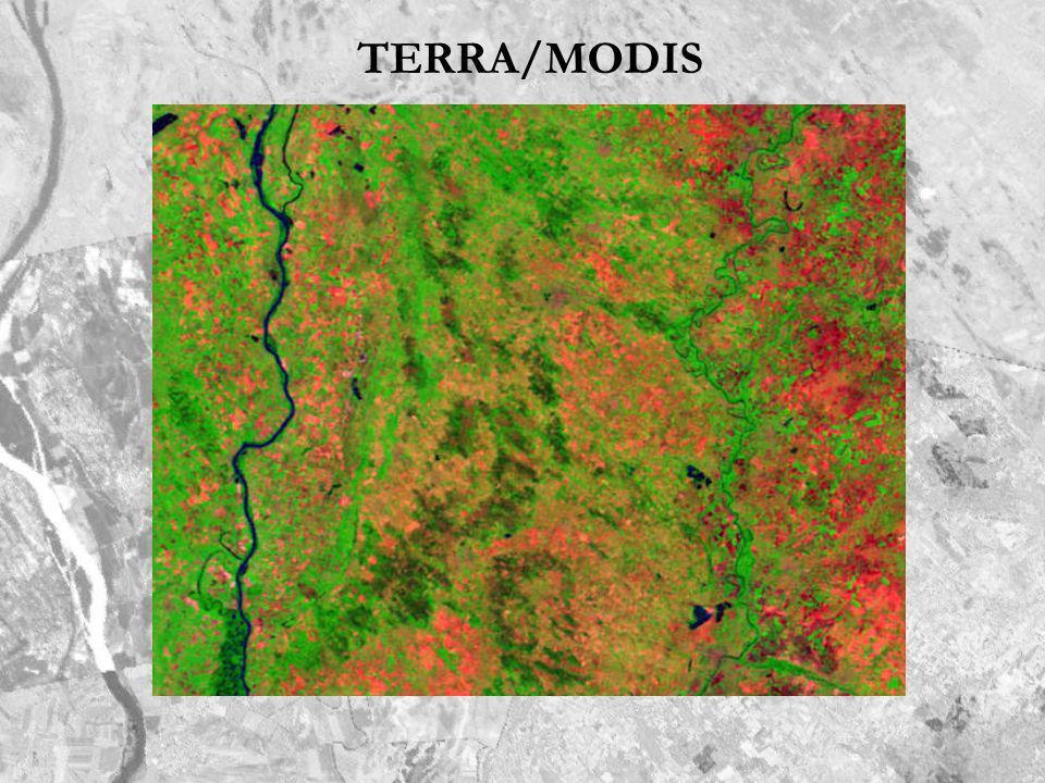 TERRA/MODIS