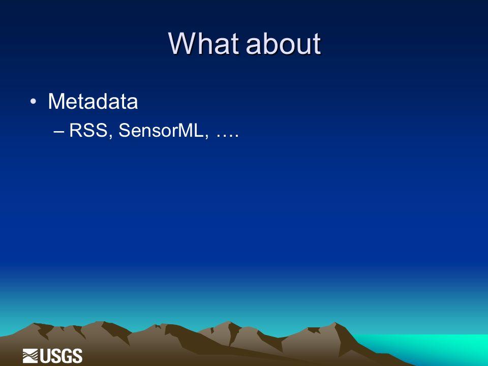 What about Metadata –RSS, SensorML, ….