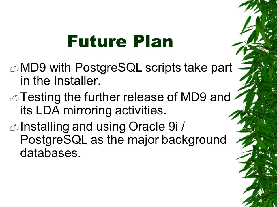 Future Plan MD9 with PostgreSQL scripts take part in the Installer. Testing the further release of MD9 and its LDA mirroring activities. Installing an