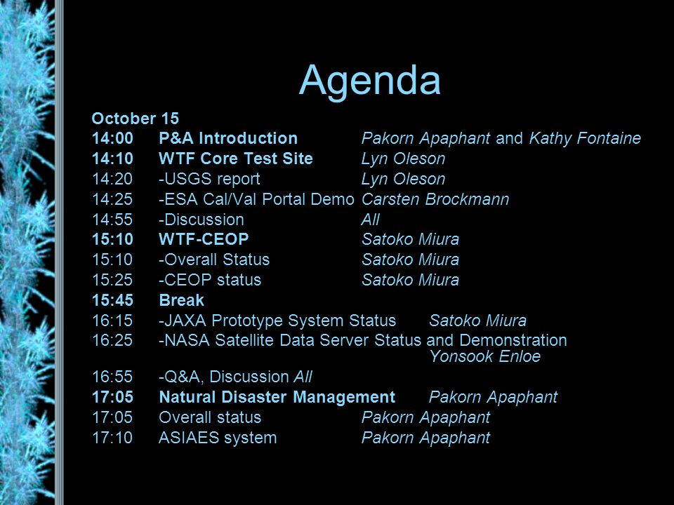 Agenda October 15 14:00P&A IntroductionPakorn Apaphant and Kathy Fontaine 14:10WTF Core Test SiteLyn Oleson 14:20-USGS reportLyn Oleson 14:25-ESA Cal/