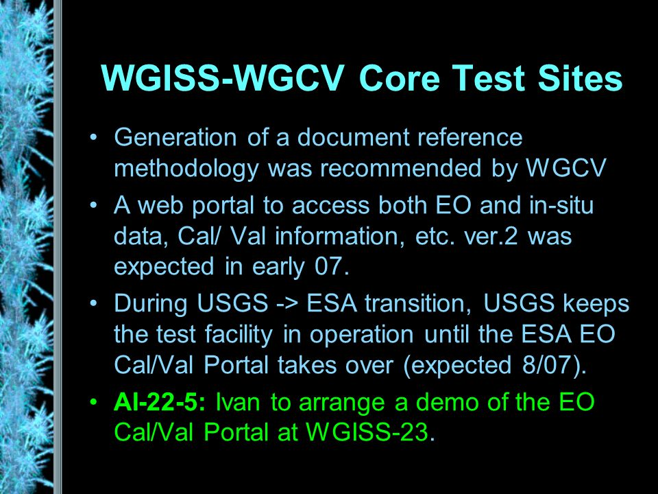 WGISS-WGCV Core Test Sites Generation of a document reference methodology was recommended by WGCV A web portal to access both EO and in-situ data, Cal/ Val information, etc.