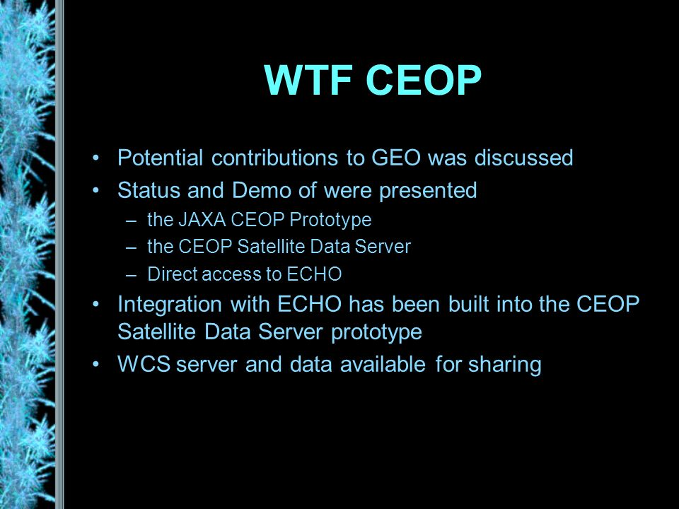 WTF CEOP Potential contributions to GEO was discussed Status and Demo of were presented –the JAXA CEOP Prototype –the CEOP Satellite Data Server –Direct access to ECHO Integration with ECHO has been built into the CEOP Satellite Data Server prototype WCS server and data available for sharing