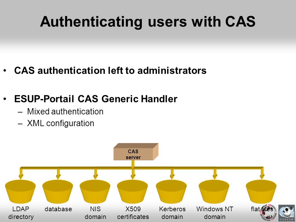 Authenticating users with CAS CAS authentication left to administrators ESUP-Portail CAS Generic Handler –Mixed authentication –XML configuration LDAP