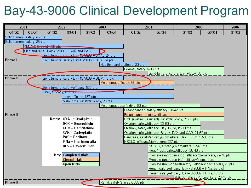 Bay-43-9006 Clinical Development Program