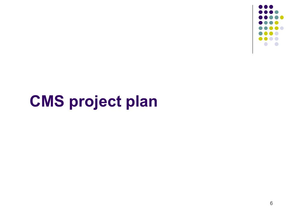 6 CMS project plan
