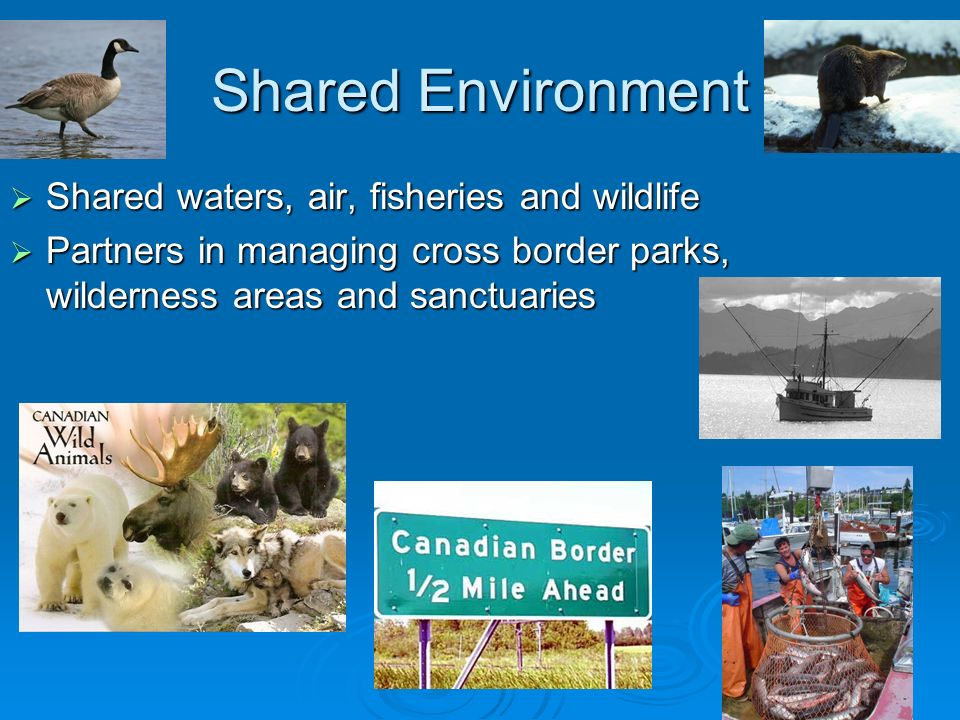 Shared Environment Shared waters, air, fisheries and wildlife Shared waters, air, fisheries and wildlife Partners in managing cross border parks, wild