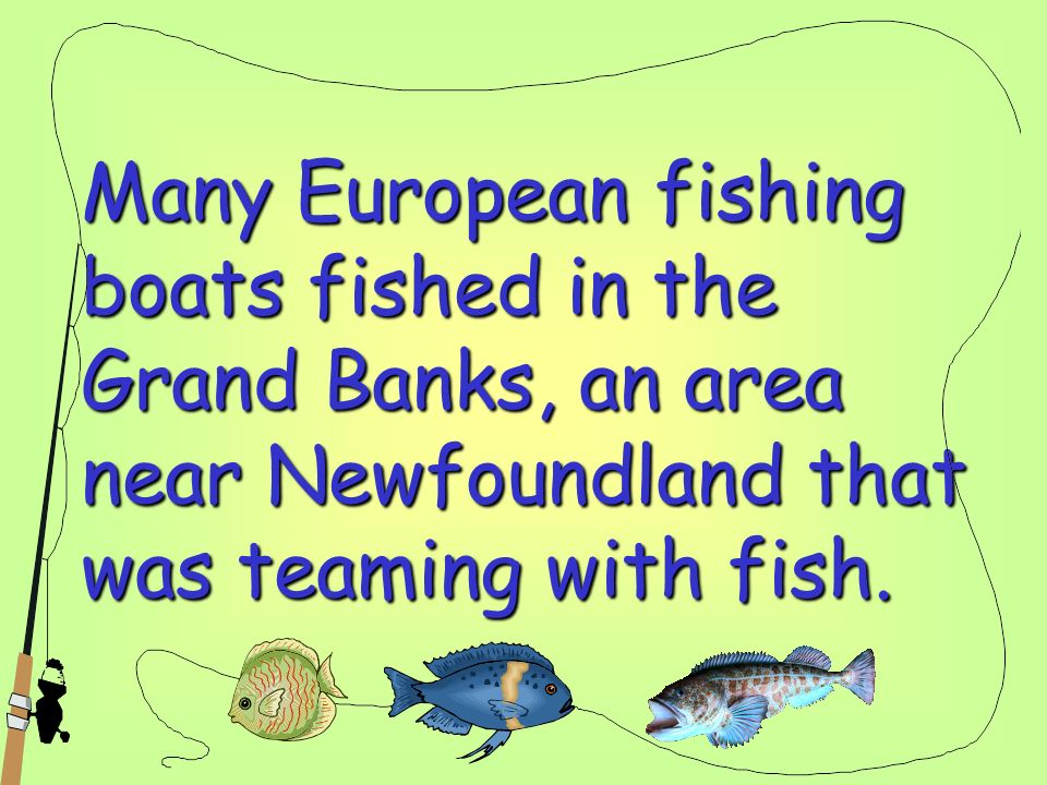 Many European fishing boats fished in the Grand Banks, an area near Newfoundland that was teaming with fish.