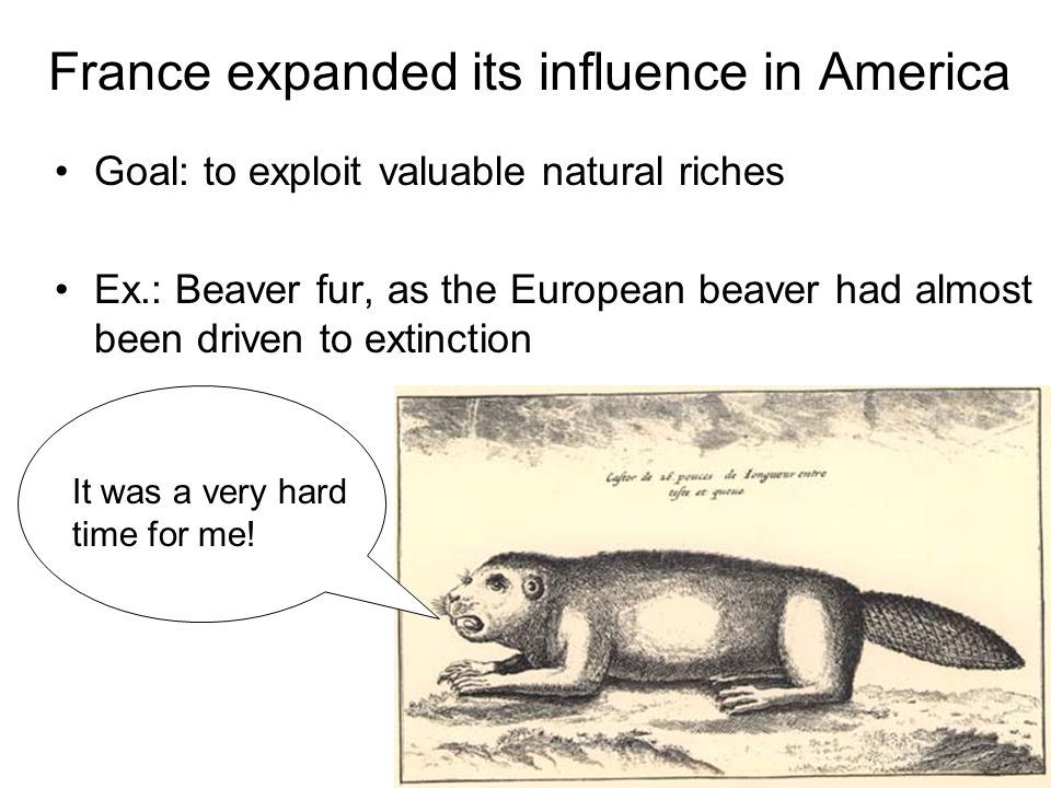 France expanded its influence in America Goal: to exploit valuable natural riches Ex.: Beaver fur, as the European beaver had almost been driven to ex