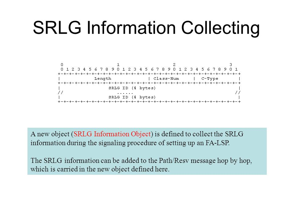 SRLG Information Collecting A new object (SRLG Information Object) is defined to collect the SRLG information during the signaling procedure of settin