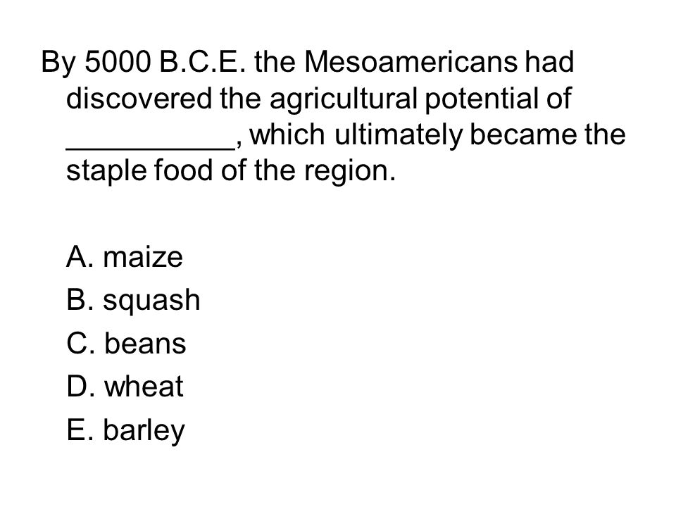 By 5000 B.C.E. the Mesoamericans had discovered the agricultural potential of __________, which ultimately became the staple food of the region. A. ma