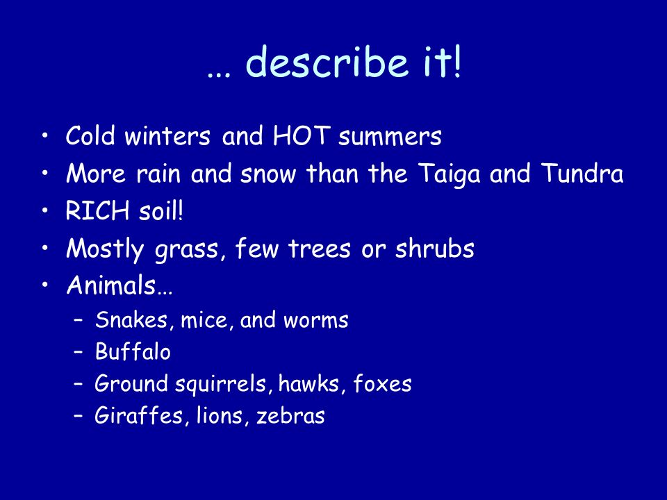 … describe it! Cold winters and HOT summers More rain and snow than the Taiga and Tundra RICH soil! Mostly grass, few trees or shrubs Animals… –Snakes