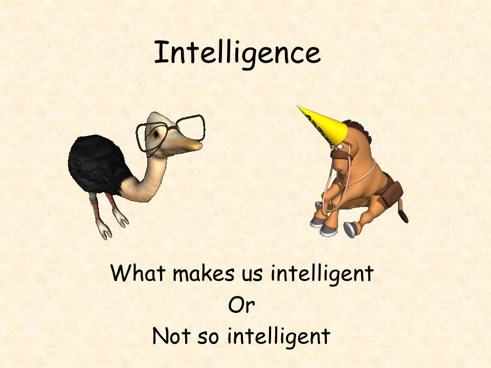 Intelligence What makes us intelligent Or Not so intelligent