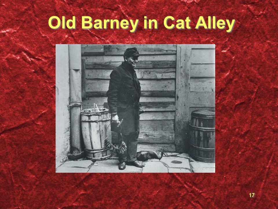 17 Old Barney in Cat Alley