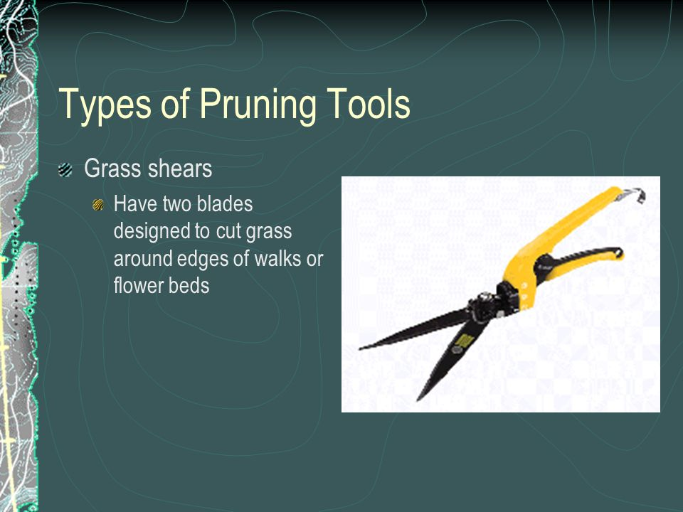 Types of Pruning Tools Grass shears Have two blades designed to cut grass around edges of walks or flower beds