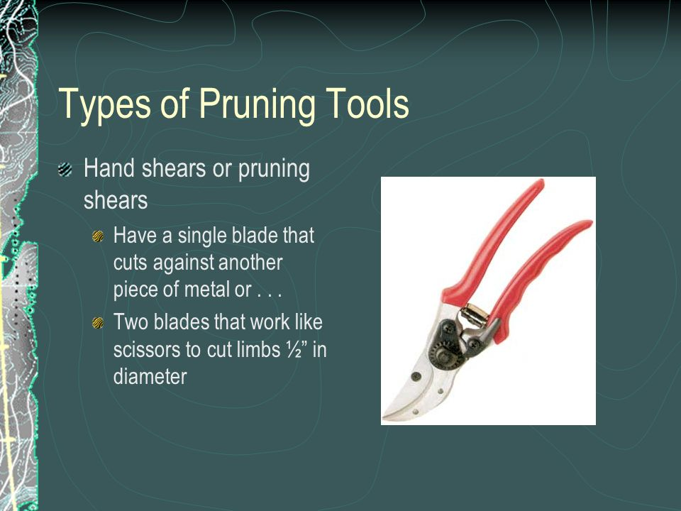 Types of Pruning Tools Hand shears or pruning shears Have a single blade that cuts against another piece of metal or...