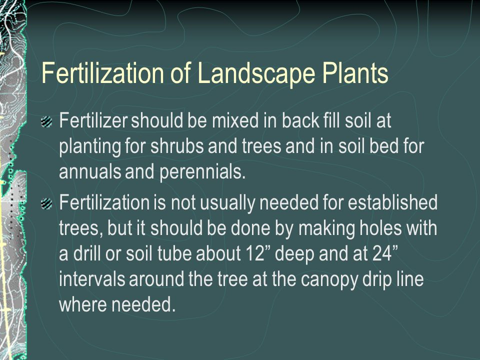 Fertilization of Landscape Plants Fertilizer should be mixed in back fill soil at planting for shrubs and trees and in soil bed for annuals and perennials.
