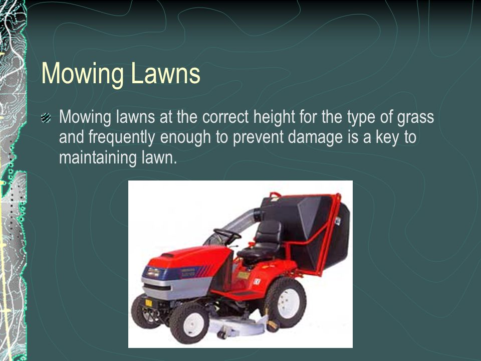 Mowing Lawns Mowing lawns at the correct height for the type of grass and frequently enough to prevent damage is a key to maintaining lawn.