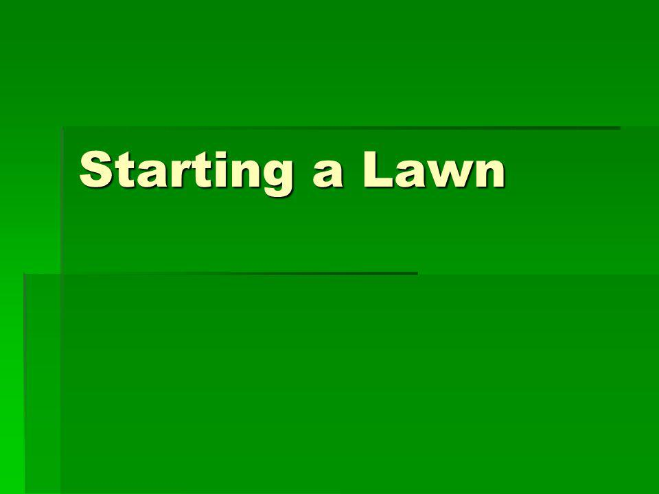Starting a Lawn