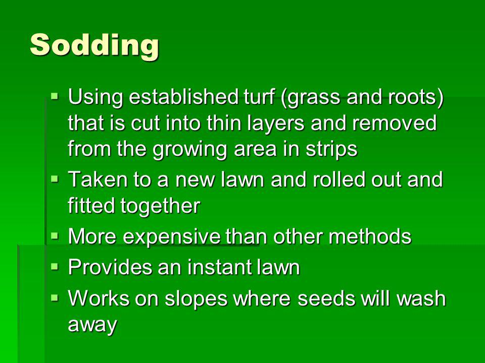 Sodding Using established turf (grass and roots) that is cut into thin layers and removed from the growing area in strips Using established turf (gras