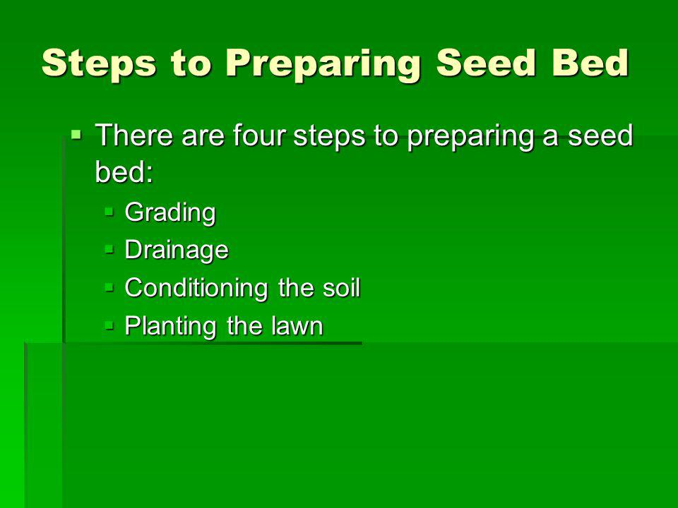 Steps to Preparing Seed Bed There are four steps to preparing a seed bed: There are four steps to preparing a seed bed: Grading Grading Drainage Drain