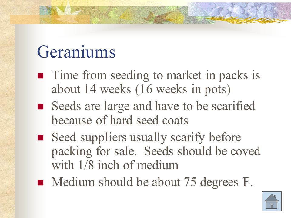 Cultural-Germination Problems Causes Improper temperatures Over-watering or underwatering Chemical residues in medium Seed planting depth Low quality seeds