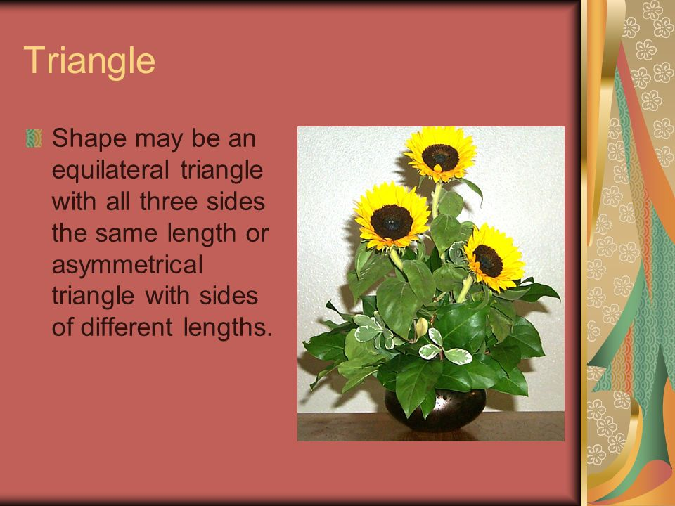 Triangle Shape may be an equilateral triangle with all three sides the same length or asymmetrical triangle with sides of different lengths.