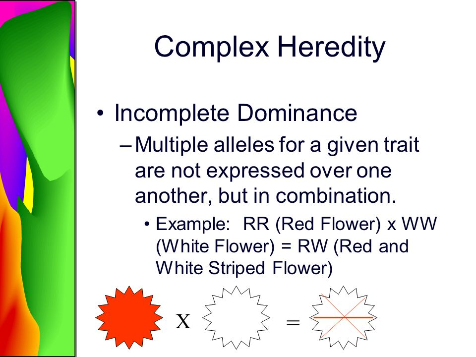 Complex Heredity Incomplete Dominance –Multiple alleles for a given trait are not expressed over one another, but in combination. Example: RR (Red Flo