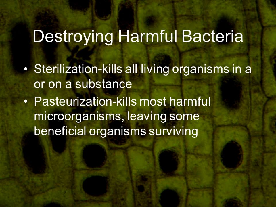 Destroying Harmful Bacteria Sterilization-kills all living organisms in a or on a substance Pasteurization-kills most harmful microorganisms, leaving some beneficial organisms surviving